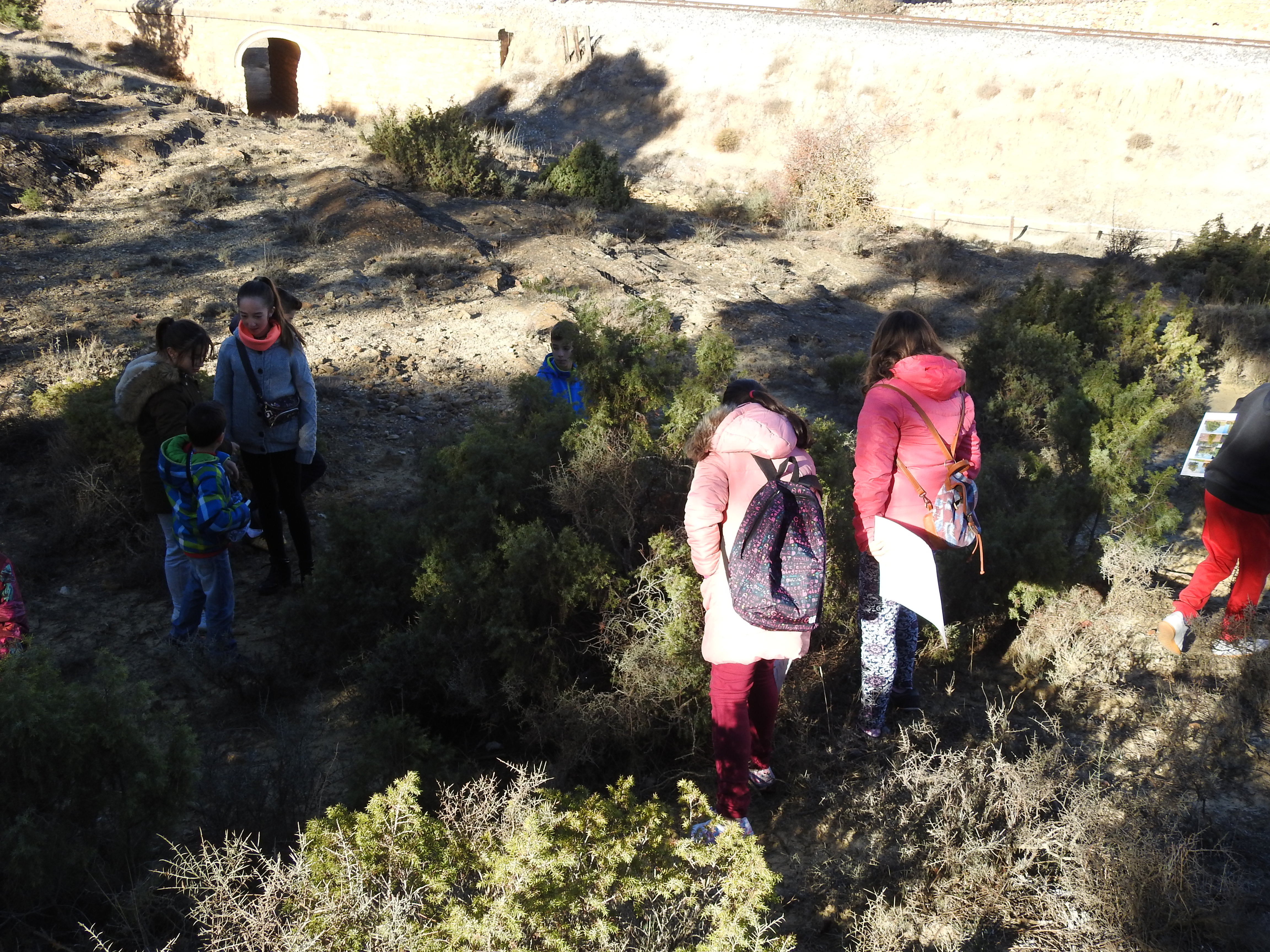 Hombres solteros valleseco
